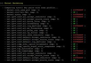 Linux kernel security overview after Lynis audit.