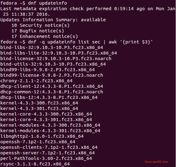 Screenshot of DNF utility showing available security updates