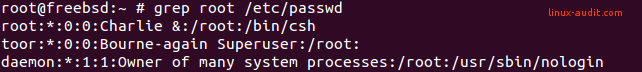 Screenshot of /etc/passwd file with toor user entry in it