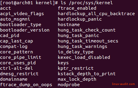 Screenshot of files in /proc/sys/kernel