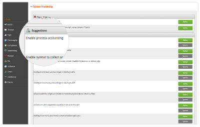 Lynis Enterprise screenshot to help with system hardening
